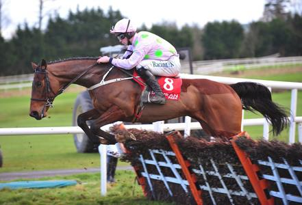 Saldier seals surprise success in Morgiana Hurdle