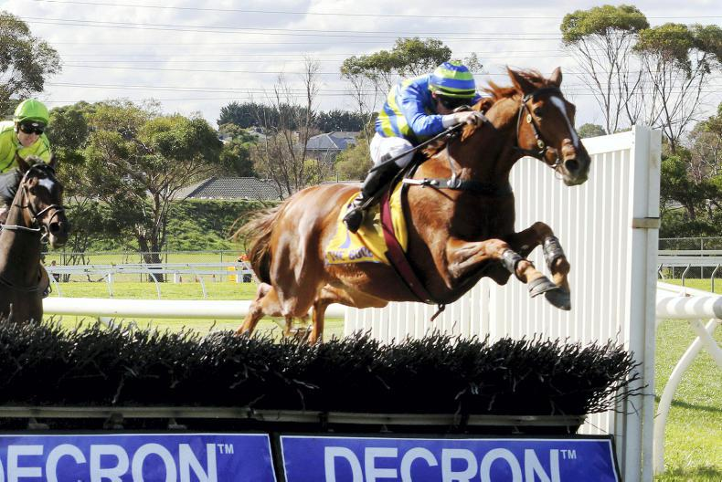 AUSTRALIA: Cheltenham target for Aussie jumper Big Blue