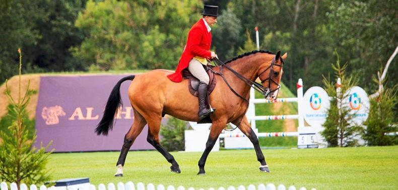 PONY TALES:  Hickstead award for brave Rory