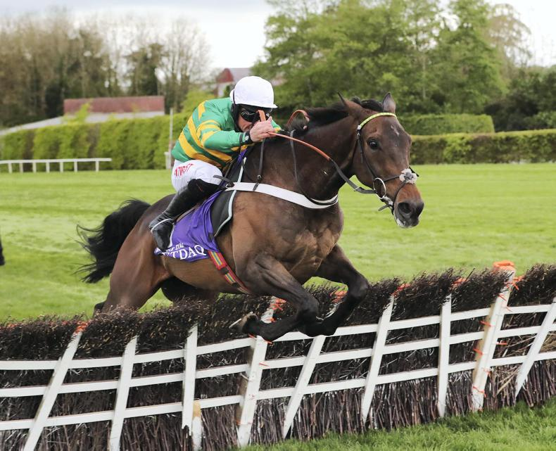 Buveur D'Air in top shape for Newcastle mission