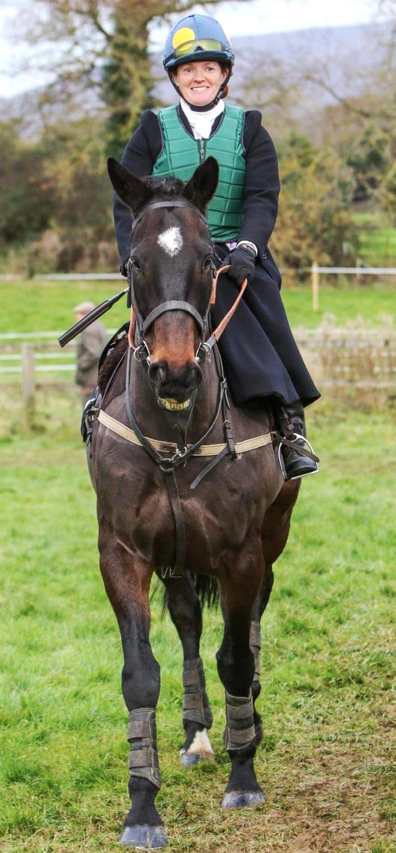 NEWS:   Owner appeal over missing horse