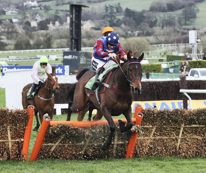 DONN McCLEAN: Opportunities beckon in sparse Stayers' Hurdle picture