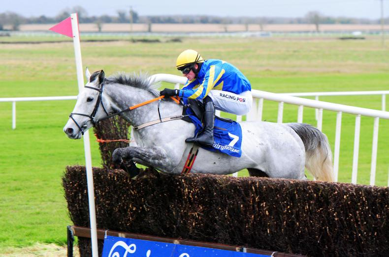 FAIRYHOUSE TUESDAY: A potential new hurdle star?