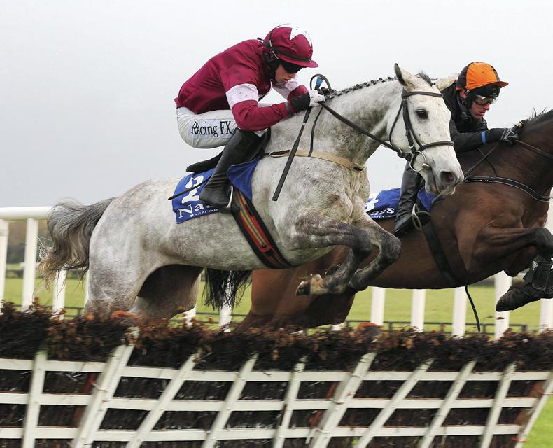 GOFFS DECEMBER SALE: Choice of qualiy National Hunt foals