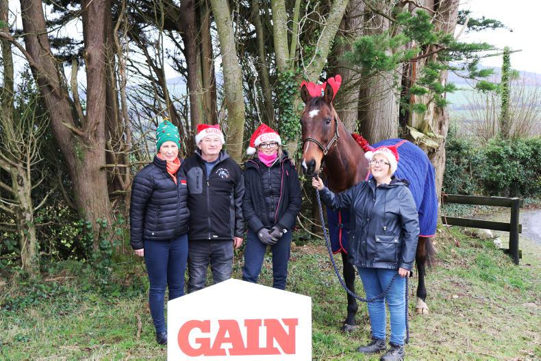 PONY TALES:  Donate a Christmas dinner to horses in need