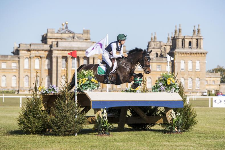 EVENTING TOP 10: Daniels is leading rider after extraordinary year