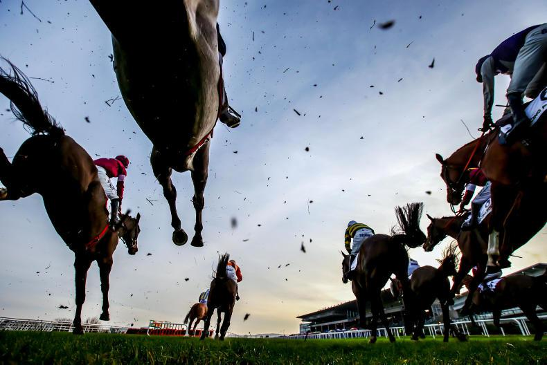 NEWS IN BRIEF: Racing and bloodstock briefs from the November 30th edition
