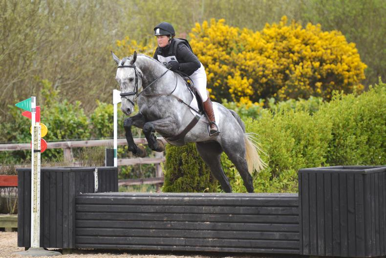WANTED: Sponsor for ex-racehorse eventing class in Wexford