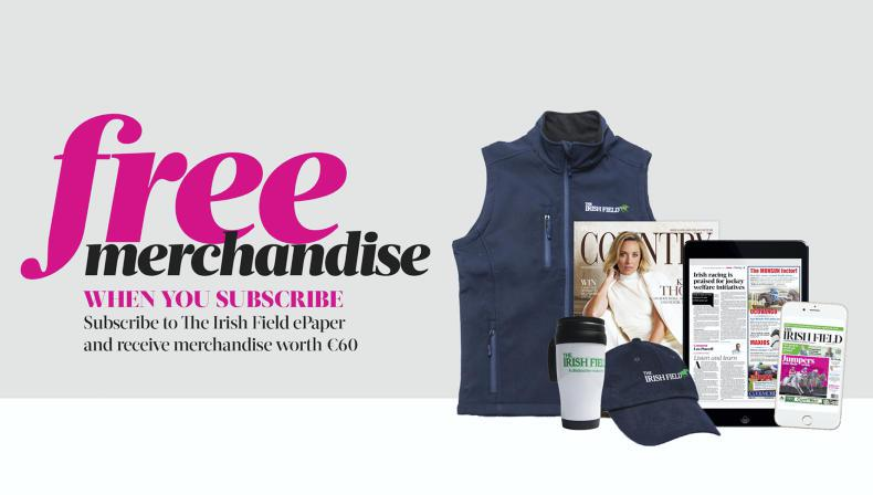 SPECIAL OFFER: 33% DISCOUNT & €60 FREE MERCHANDISE!