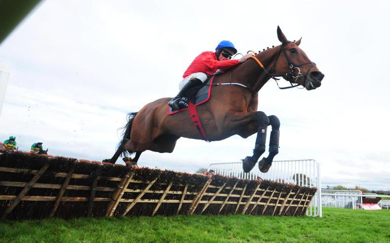 ROYAL BOND NOVICE HURDLE: Take a chance on Embittered in classy Royal Bond