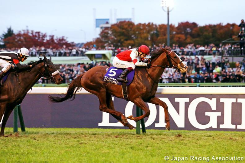 JAPAN: Suave ride lands Japan Cup for fan favourite Murphy