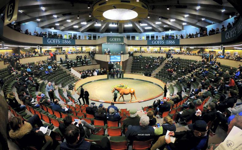 SALES: Goffs acknowledges challenging times after vibrant November Sale