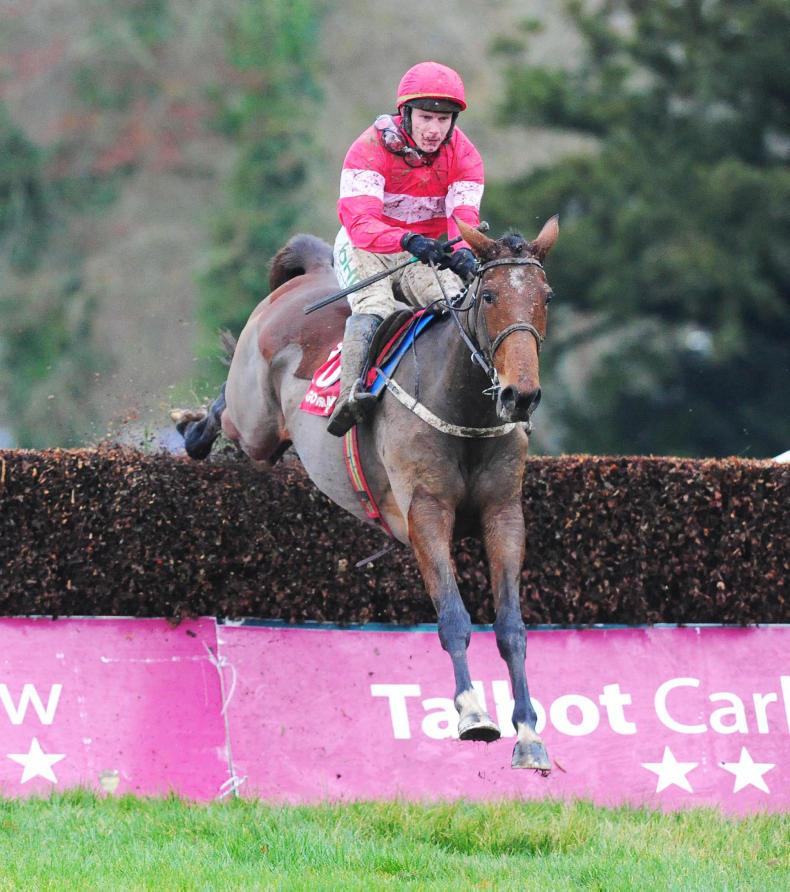 GOWRAN PARK:  Laurina takes fences in her stride