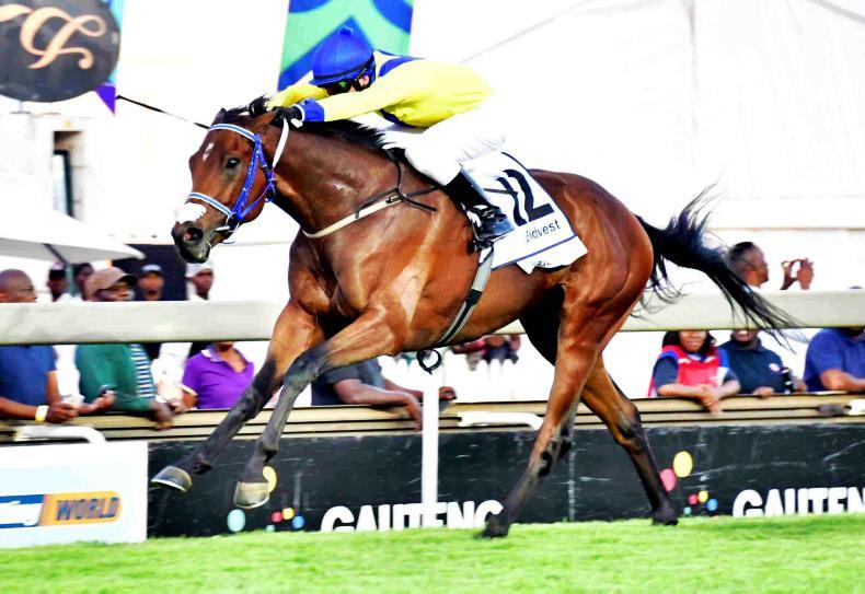 SOUTH AFRICA: Zillzaal Summer Cup shock winner