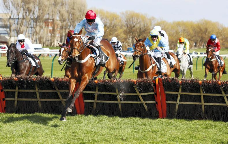Christmas Hurdle-bound Blue snapped up by Tabor