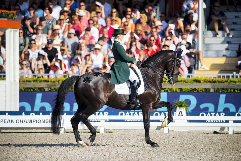 FEATURE: Dressage is trending