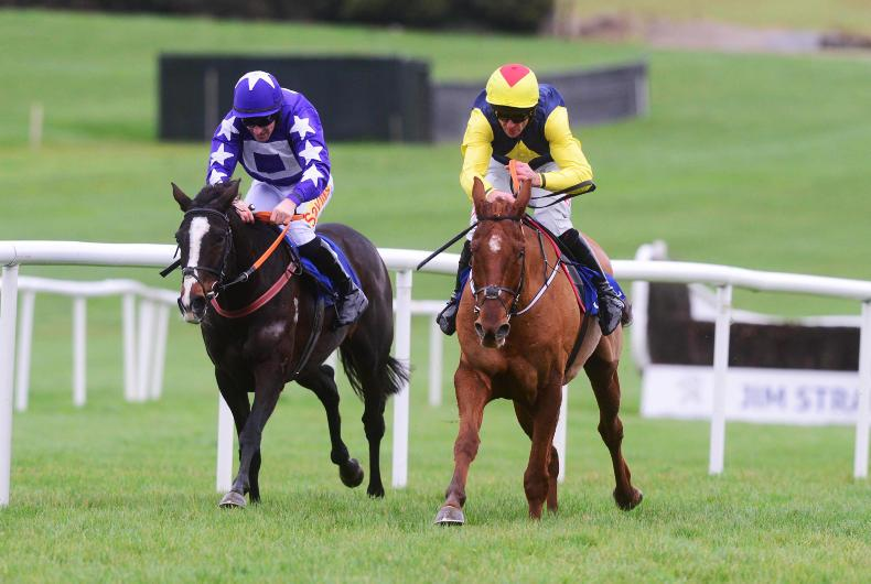 Storyteller back to winning ways in Clonmel feature