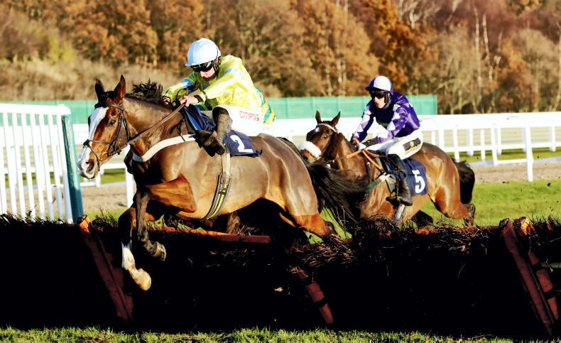 BRITAIN: Buveur's injury opens Champion Hurdle wide
