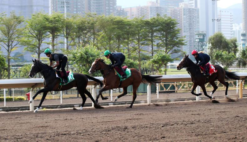 HONG KONG PREVIEW: Magic Wand for a grand finale