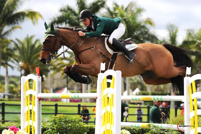 COMMENT: Show jumpers bidding for a worthy cause