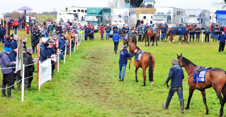 EOGHÁIN WARD: UK initiatives for older horses highlight an opportunity