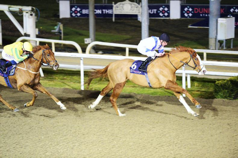 DUNDALK FRIDAY: Freescape bounces back to form
