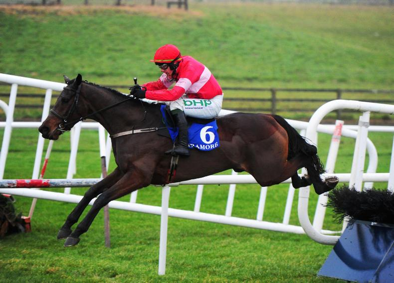 Mullins keen to follow 'Laurina route' with Dolcita
