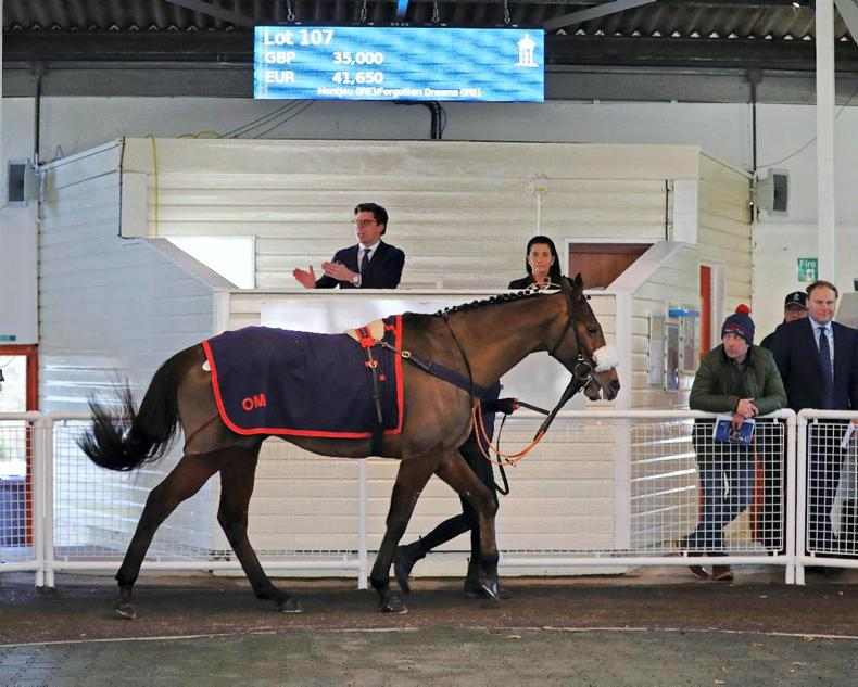 TATTERSALLS ASCOT DECEMBER SALE: Fiesole returns home as Ascot's sale year ends
