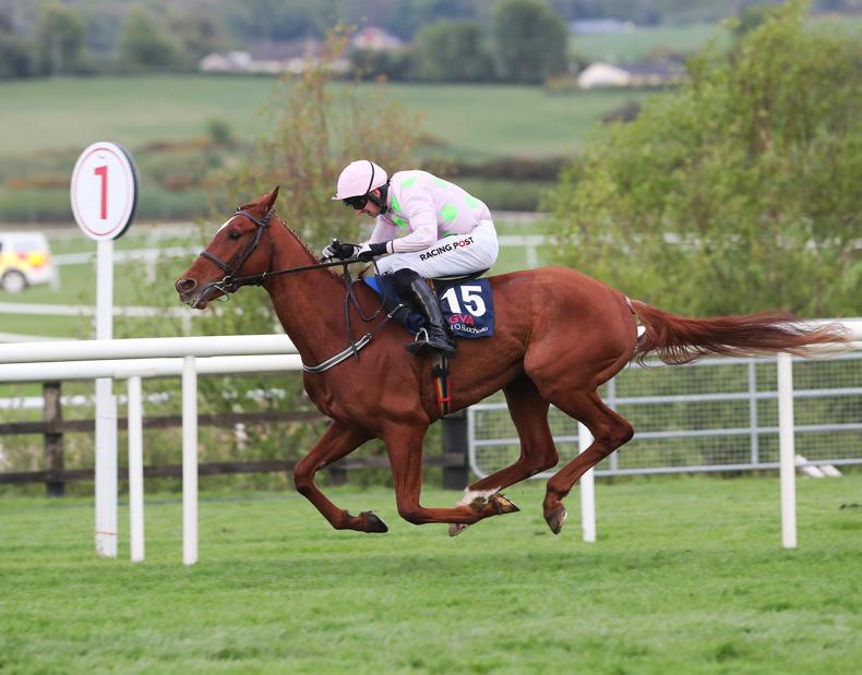 FAIRYHOUSE SATURDAY: Monkfish the one to beat