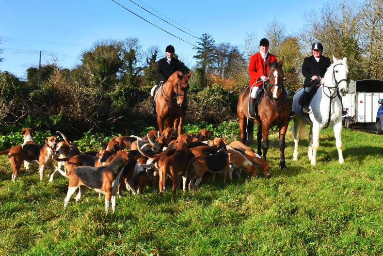 HUNTING: Blazing through Galway country