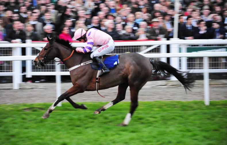 Bitofapuzzle another graded winner for the Sadler's Wells line