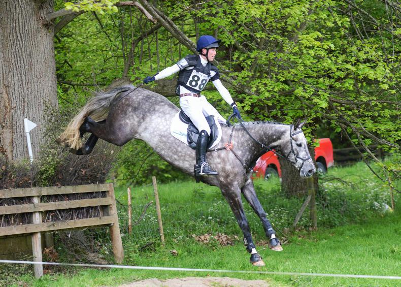 REVIEW 2019 - National eventing: Derena Super Star lives up to her name