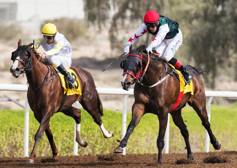 INTERNATIONAL RACING: Blow to UAE as racing is suspended at Jebel Ali