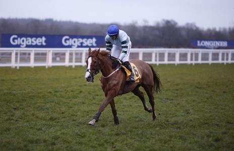 Sleepy not for catching in Ascot demolition