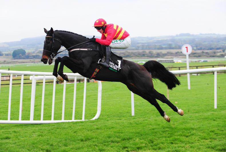 LEOPARDSTOWN SUNDAY: Will Klassical Dream jump back into Champion Hurdle?