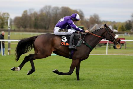 Lady Buttons pips Diva in Doncaster thriller