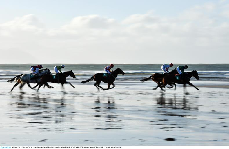 HORSE AND PONY RACING: First for O'Connor and Tail To Tail still going strong