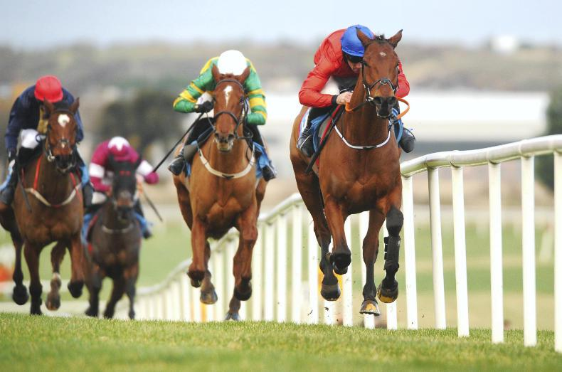 MONDAY OUTLOOK: Envoi delivers again but lots to consider pre Cheltenham