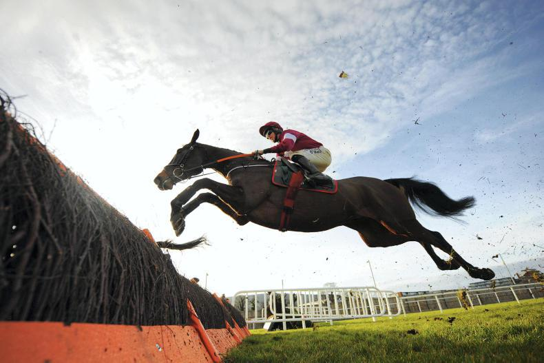Abacadabras part of Elliott entry at Punchestown