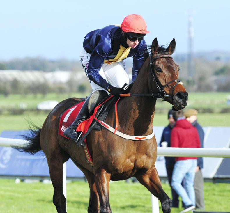 Brassil ponders Punchestown return for City Island