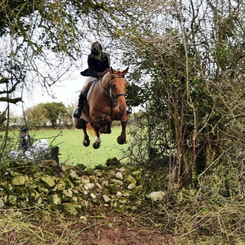 PONY TALES:   Going airborne with the South Westmeaths