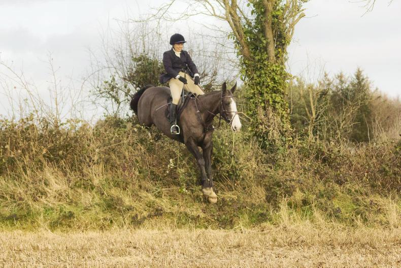 PONY TALES:   Jane cuts a dash out hunting!