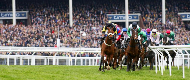 CHELTENHAM: Which horses have that Festival feeling?