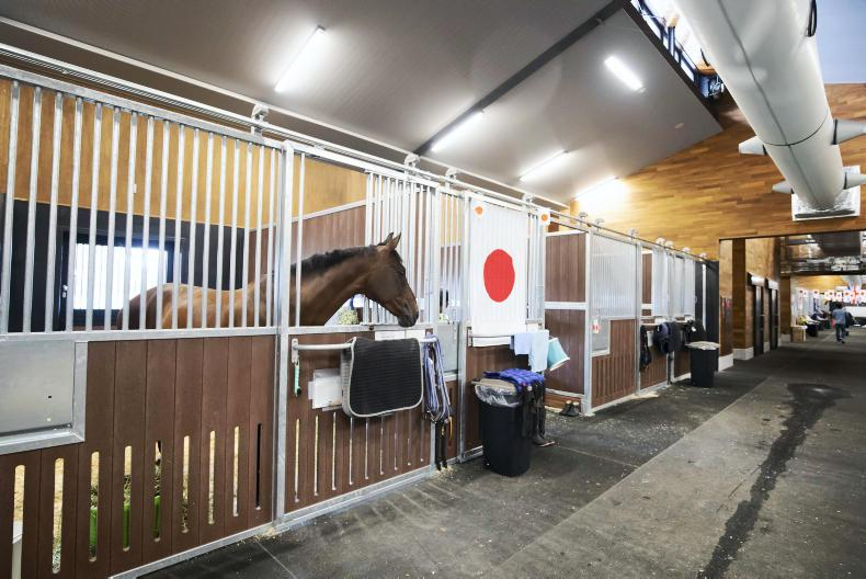 NEWS: Horse ownership deadline for Tokyo looms