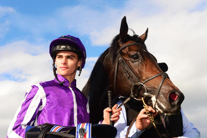 Donnacha O'Brien kicks off training career at Dundalk