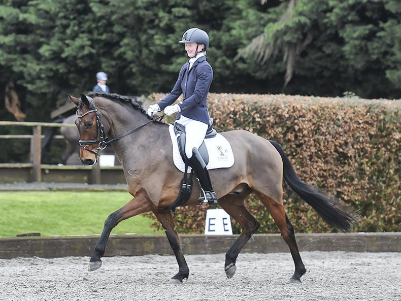 DRESSAGE:  Dowley shines with Insticator BS