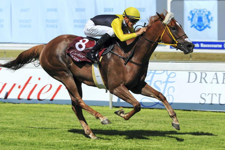 SOUTH AFRICA: Queen reigns supreme in Kenilworth