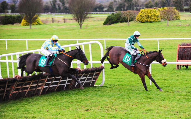 NAVAN SATURDAY PREVIEW: Take Cromwell's Alfa to score again in Navan feature