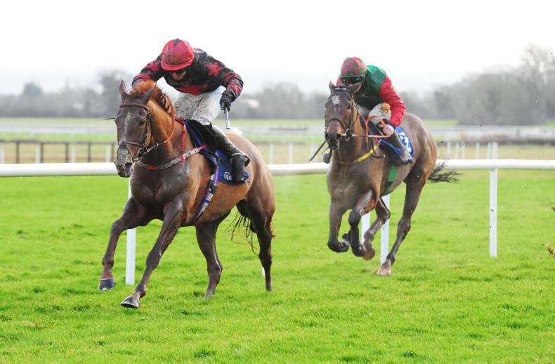 FAIRYHOUSE TUESDAY: Dublin the destination for Shumaker