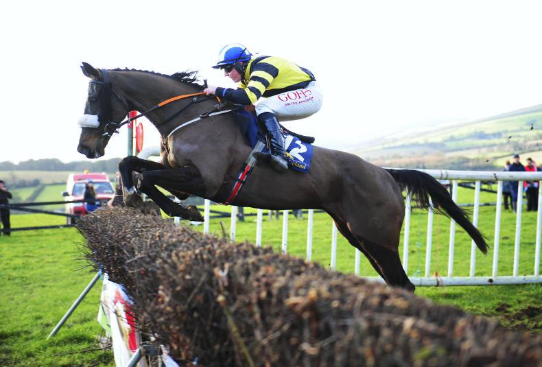 TINAHELY SUNDAY: Reynolds strengthens Cheltenham team with Mighty Stowaway